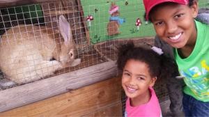 kt kj with ailsa the jubo rabbit